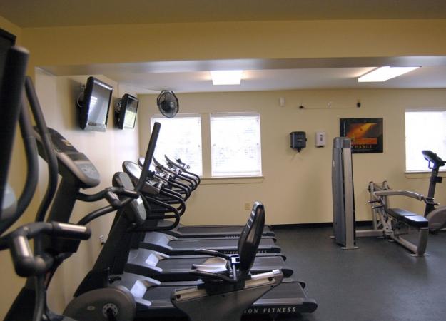 gym_treadmills-1030×685